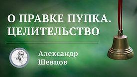 Целительство | Александр Шевцов