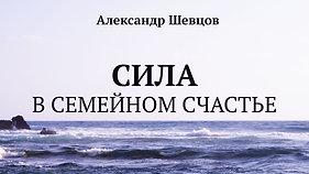 Сила в семейном счастье. Александр Шевцов