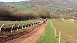 Penbiddle Racing Gallops