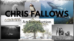 Chris Fallows Introduction