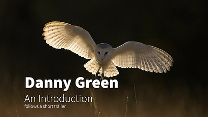 Danny Green Introduction