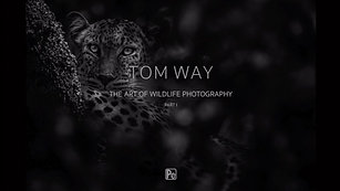 Tom Way The Art of Wildlife Photography Part I