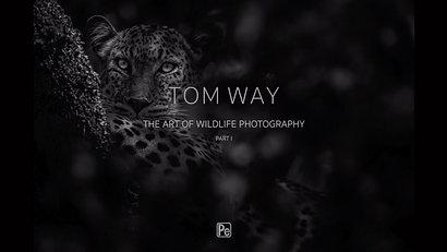 Tom Way The Art of Wildlife Photography Part I
