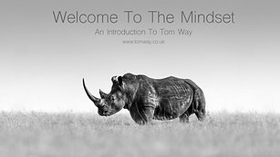 Tom Way Welcome to the `Mindset