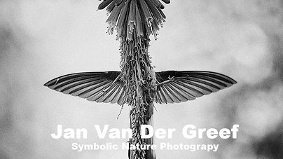 Jan Van Der Greef Symbolic Nature Photography