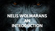 Nelis Wolmarans Introduction
