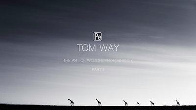 Tom Way -The Art of WIldlife Photography Part II