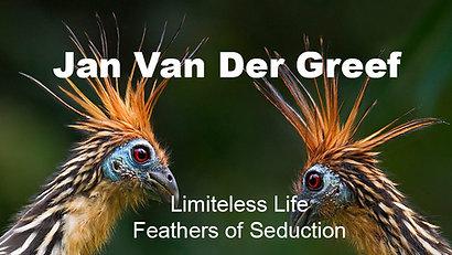 Jan Van Der Greef Limitless Life: Feathers of Seduction