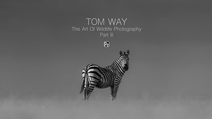 Tom Way The Art of Wildlife Photography Part III