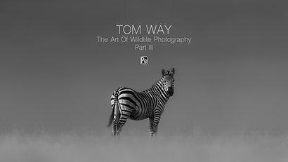 Tom Way The Art of Wildlife Photography Part III