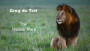 Greg du Toit The Masai Mara - A Sojourn on Africa's Greatest Plain