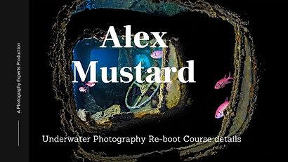 """Alex Mustard  - """"Underwater Re-boot Course"""""""