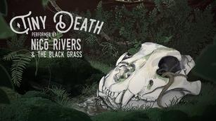 Tiny Death Album Promo