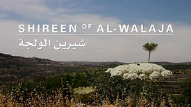Shireen of al-Walaja