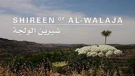 Shireen of al-Walaja