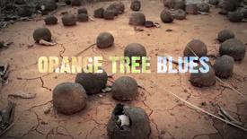 Orange Tree Blues