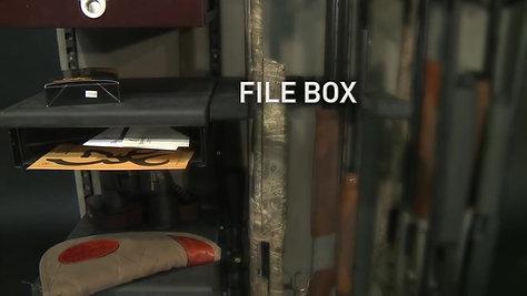 Axis Shelf -- Browning Makes Guns Safes Work Better.