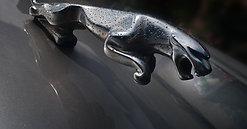 Jaguar XJ V8 Sport - Mini Valet