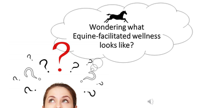 Wondering about equine sessions at Fox Song Farm?
