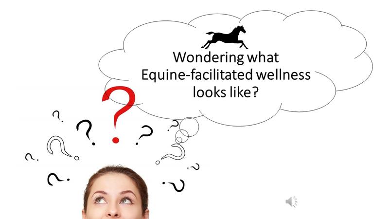 Equine facilitated wellness