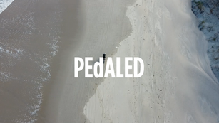 PEdALED JARY AW20_teaser 1