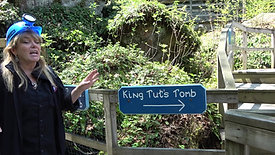 enter kings tuts tomb