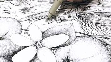 Terra Flora Butterfly