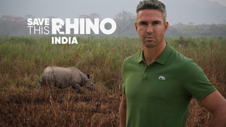 Save This Rhino India