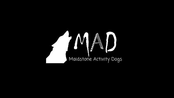 Maidstone Activity Dogs
