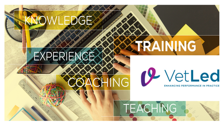 What training and support can VetLed offer my practice?