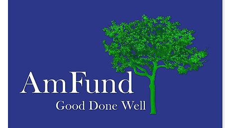 What AmFund is All About