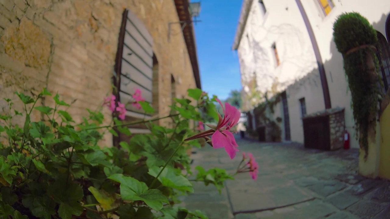 Resort Borgo San Luigi with alivePets.com
