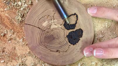 Wood-Burned Coasters