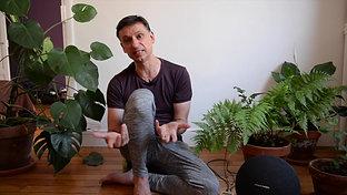 Apprendre à Méditer avec la Musique des Plantes