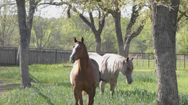 Aerial Tour - 42 Acre Horse Training Facilty, Weatherford, TX