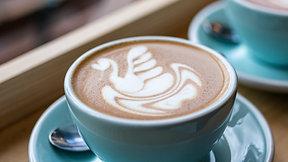 Latte Art: The Swan