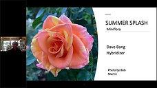 New Roses for 2021  Webinar