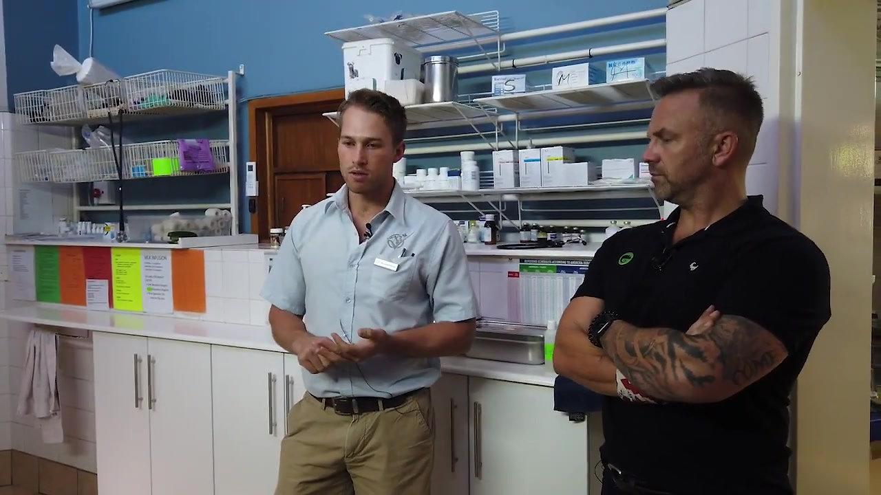 Honeydew Animal Clinic