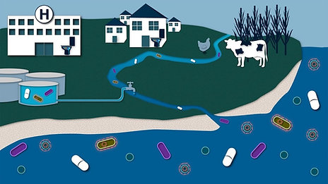 Antimicrobial Resistant Bacteria Spread: Through the Environment and Human Exposures