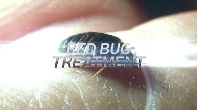 Big D Pest and Termite McKinney TX