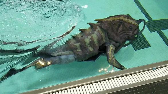 GDT Klieg underwater test