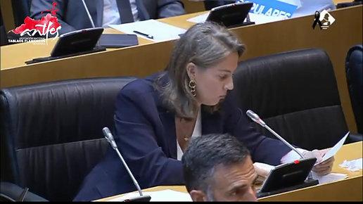 Antfes Parlamento - HD 720p