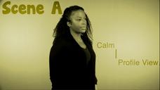 001 | Scene A | Calm | Profile