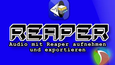 VIDEO Tutorial Reaper
