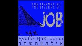 The Silence of Job