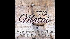 Yachad Video