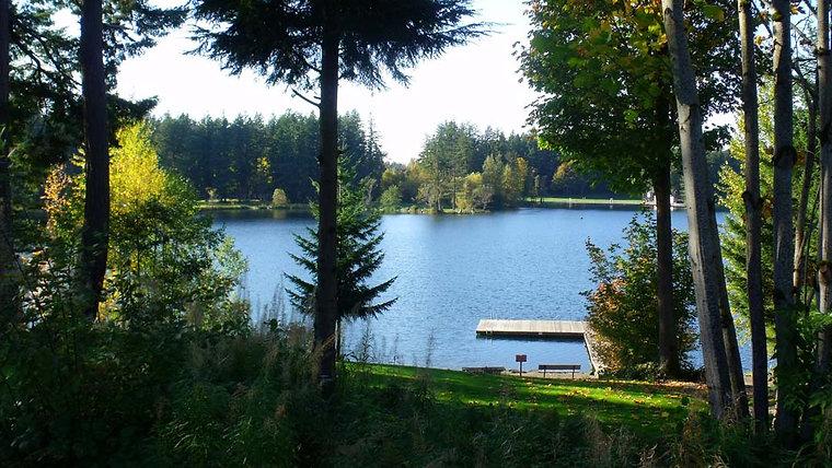 Sedona Borzoi At The Lake Park
