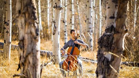 Shaun Diaz Musician