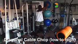 Diagonal Cable Chop (low to high)