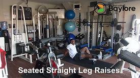 Seated Straight Leg Raises
